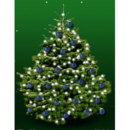 Kerstboom Nordmann 150cm Met Kerstballen Donkerblauw Mat